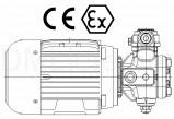Двигатель-насос GMPX
