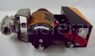 Поставка клапана с пневмоприводом Flowserve
